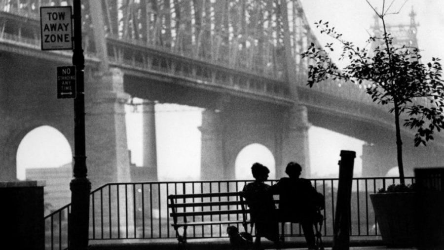 Image of Woody Allen: Six Films – 1979-1985