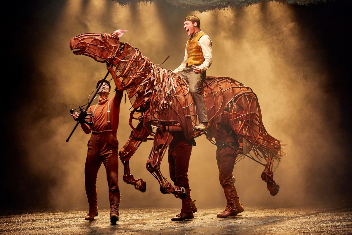 Image of War Horse