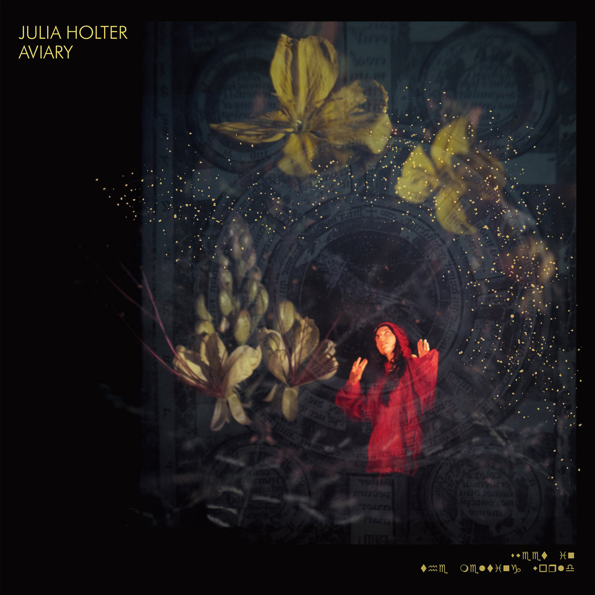 Image of Julia Holter – Aviary
